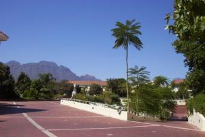 Stellenbosch University